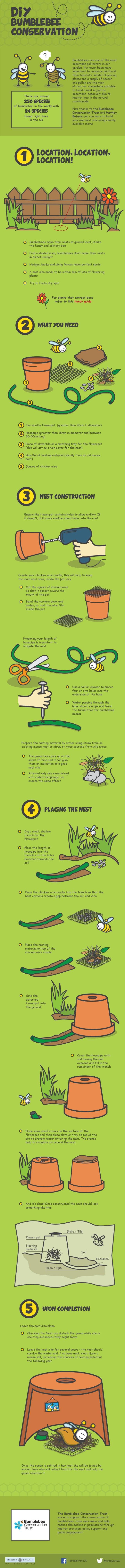 bee-nesting